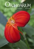 Portada Número 6 Orchidarium